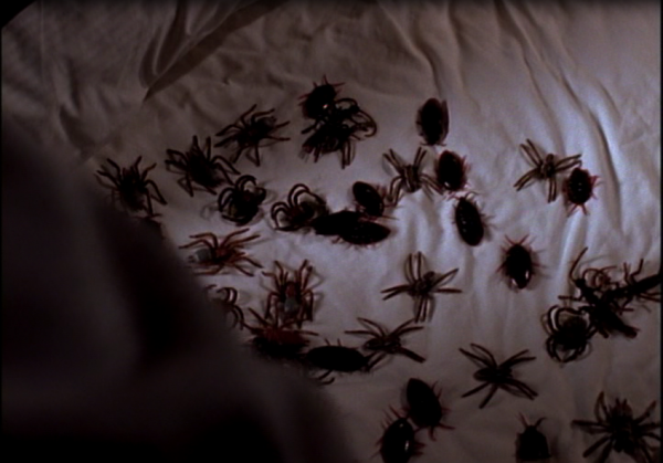 bugs-600x419.png