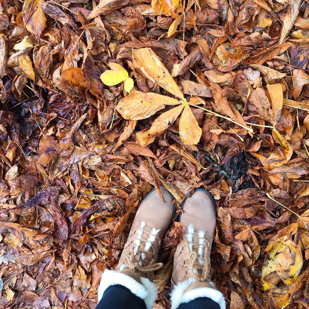 Fallen leaves in Dorset, Autumn 2016. And Nina's new boots! Photo by Nina Parker.
