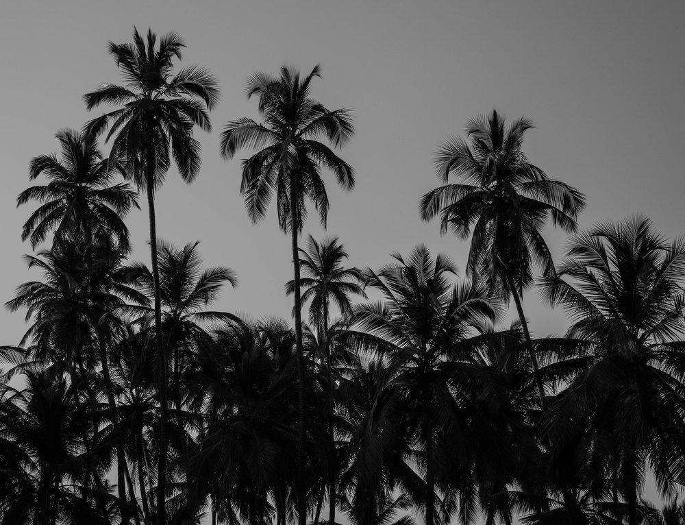 Goa-15.jpg