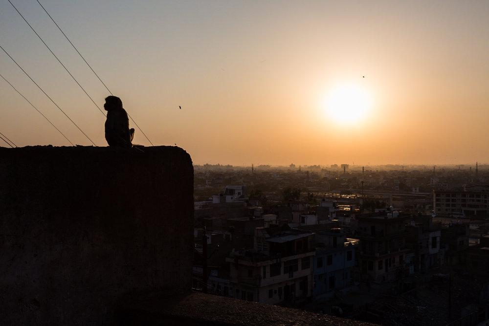 Jaipur-96.jpg