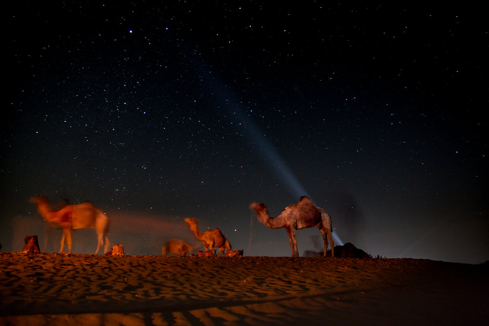 Jaisalmer-15.jpg