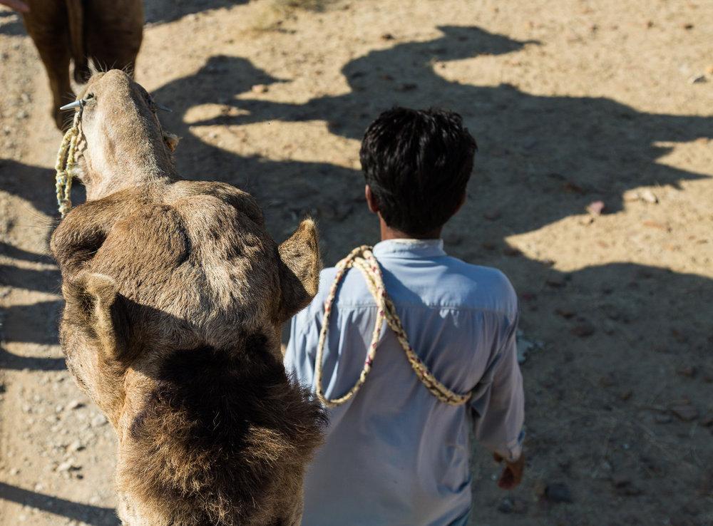 Jaisalmer-44.jpg