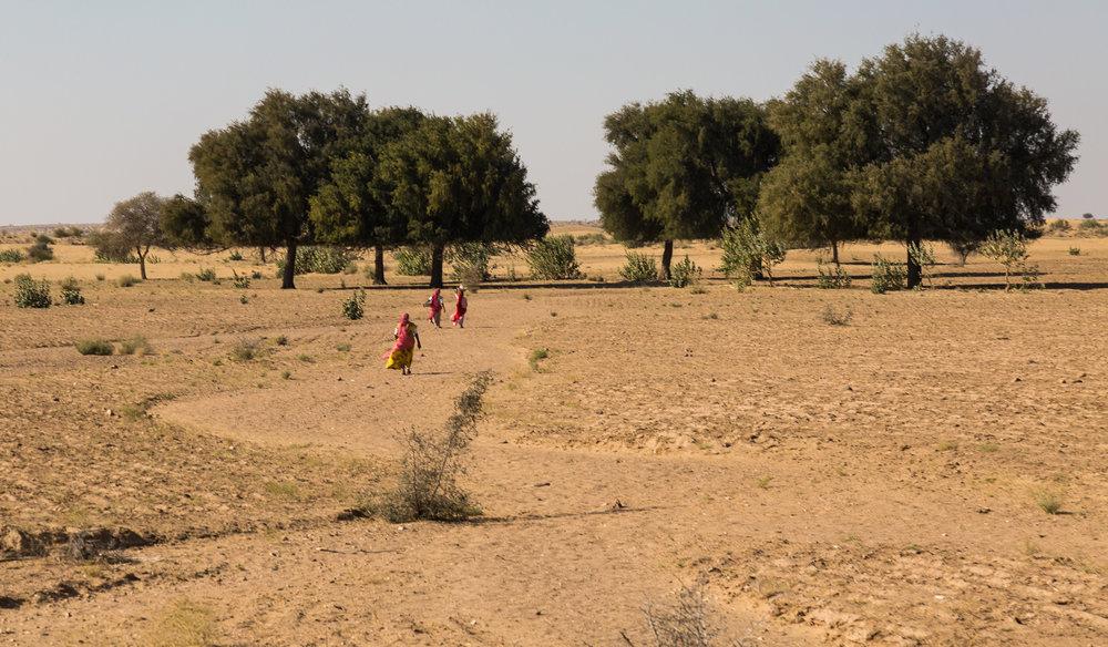 Jaisalmer-43.jpg