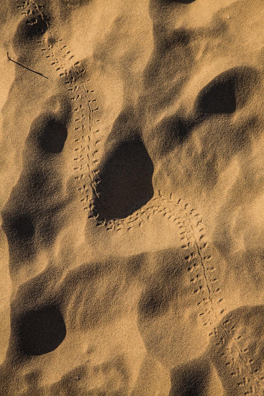 Jaisalmer-54.jpg