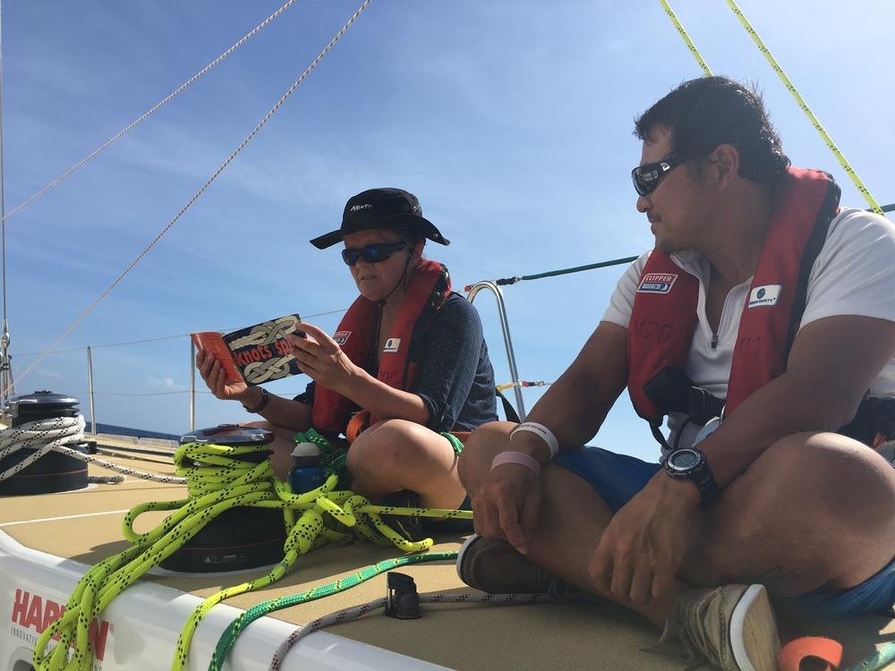 Gentle sailing