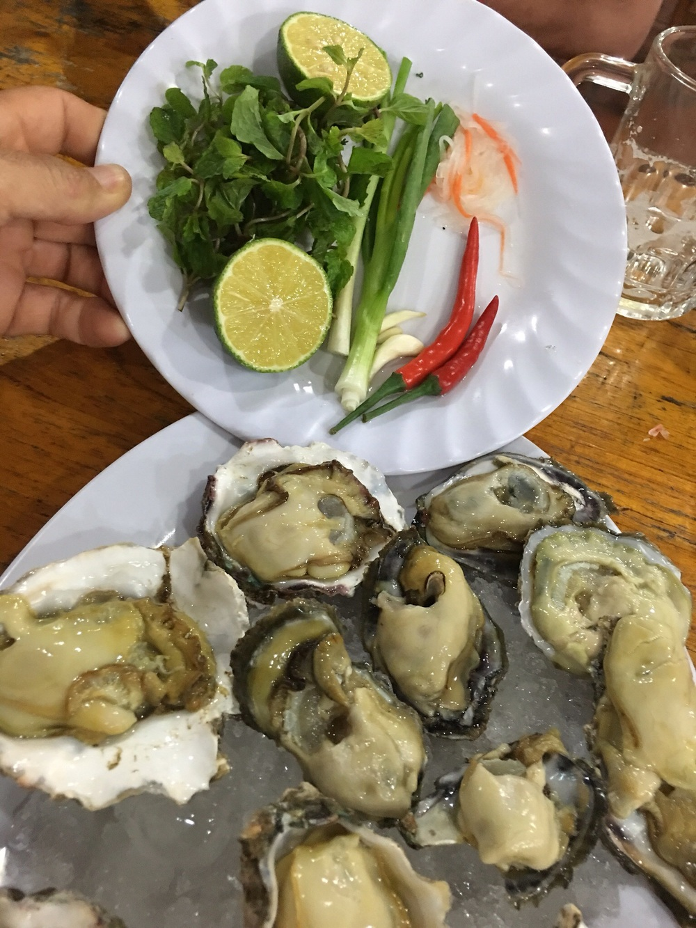 raw oysters that were a lot like Malpecs...