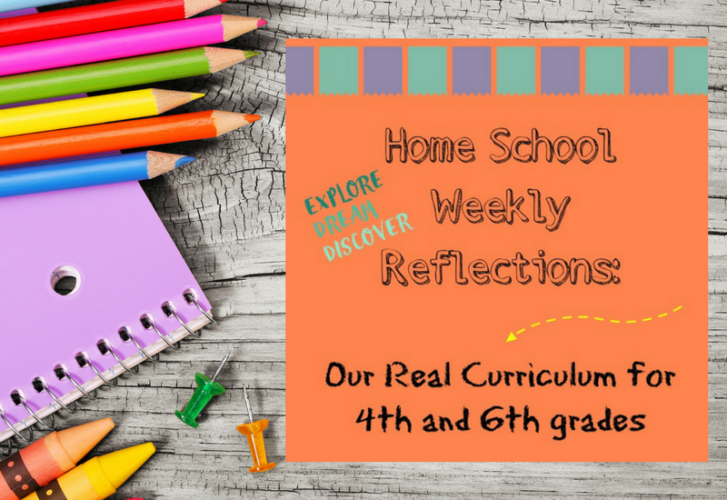 Our real homeschool curriculum for fourth and sixth grades