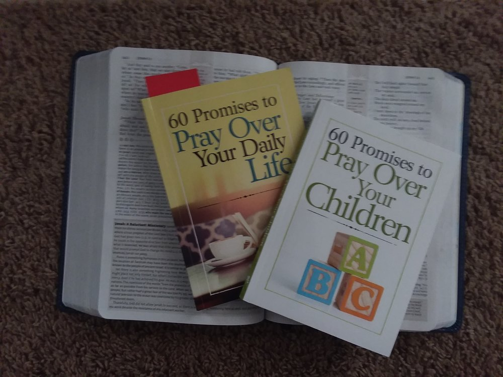60 Promises to Pray Over Your Daily Life and 60 Promises to Pray Over Your Children from Dayspring