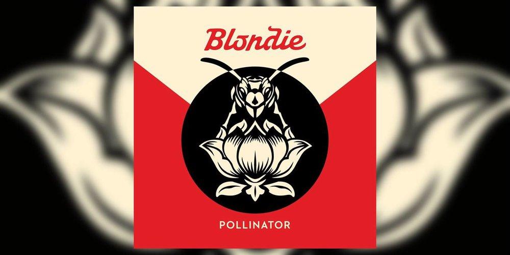 Albumism_Blondie_Pollinator_MainImage.jpg