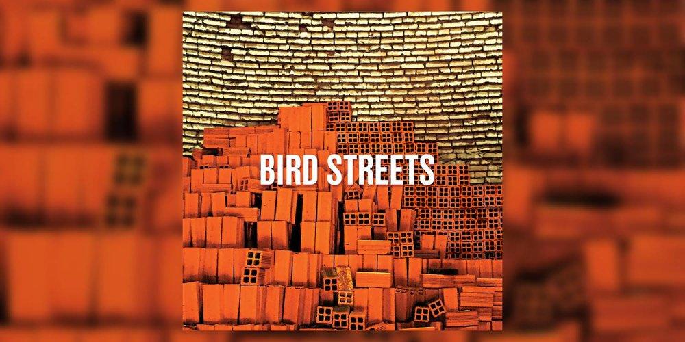 Albumism_BirdStreets_BirdStreets_MainImage.jpg