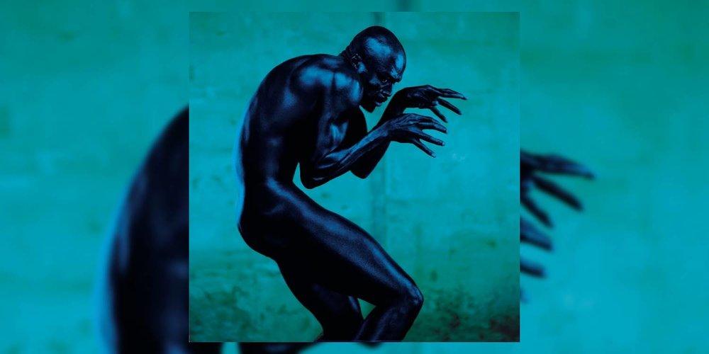 Albumism_Seal_HumanBeing_MainImage.jpg