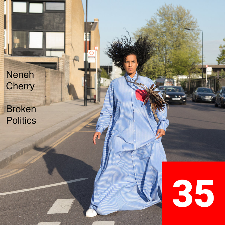 35_NenehCherry_BrokenPolitics.png