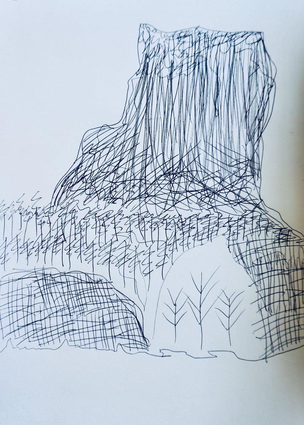 Landscape in Progress