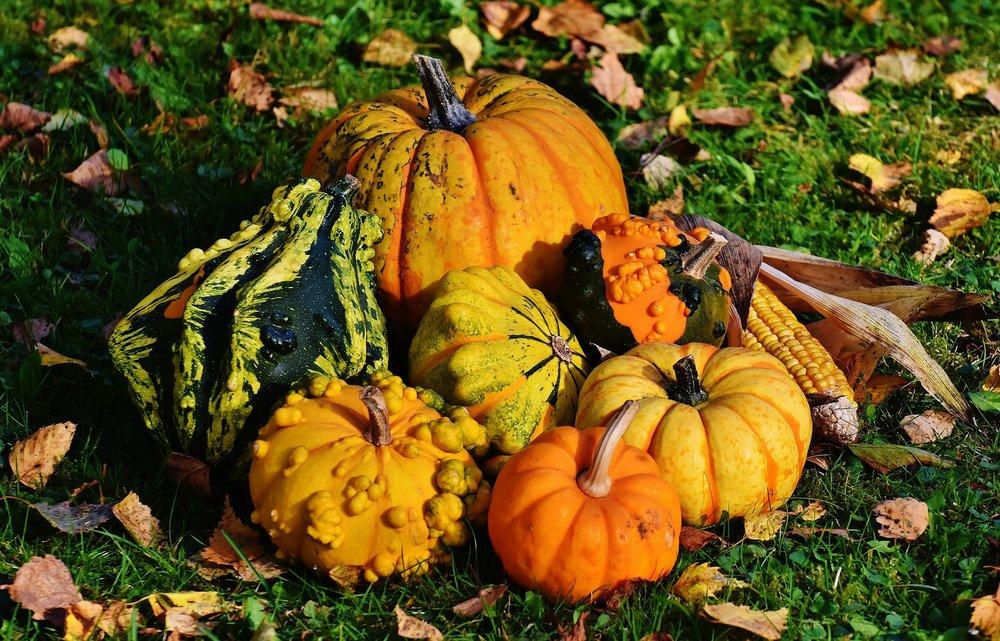 pumpkins-1712841_1920.jpg