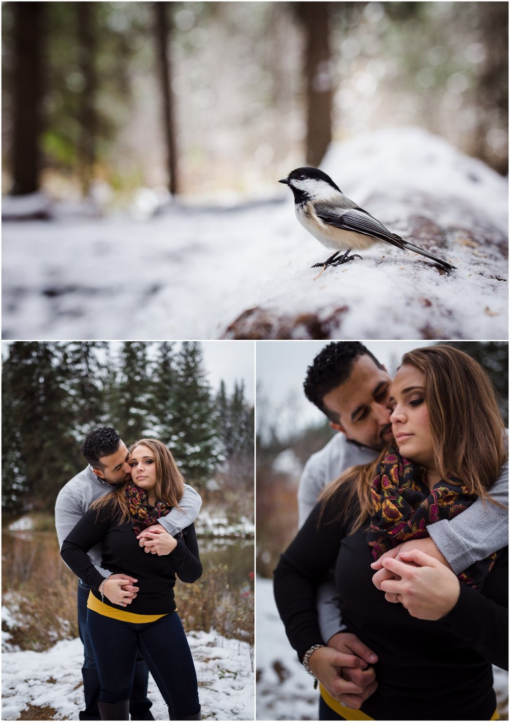 Edmonton couples photographer couples in love best of 2016 October