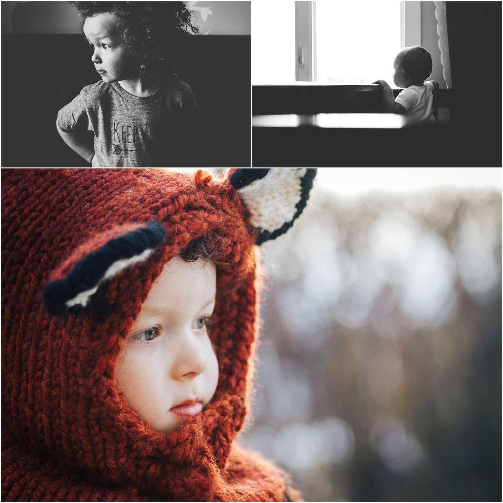 Edmonton Photographer - best of 2016 fox baby