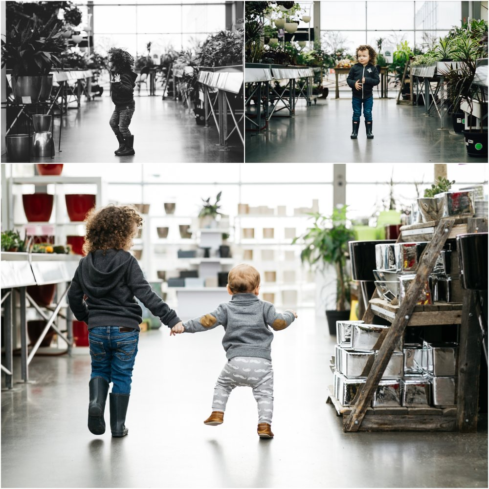 Edmonton Family Photographer - Best of 2016 Greenhouse Brothers Best Friends