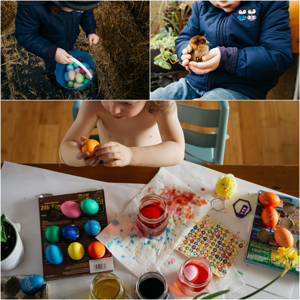Edmonton Lifestyle Family Photographer - Best of 2016 - Easter Egg Painting Egg Hunt Baby Chick