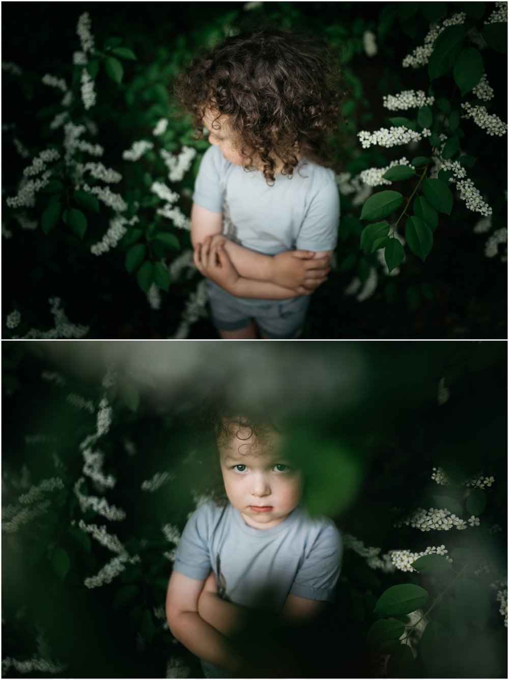 Edmonton Lifestyle Child Photographer - Best of 2016 - Blossoms preschooler Toddler Spring