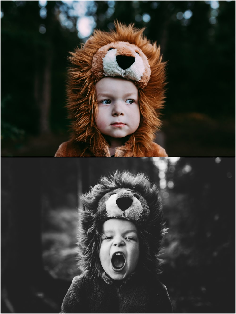 Edmonton Family Photographer - Best of 2016 - Halloween - Whitemud Ravine - Lion Costume - YEG