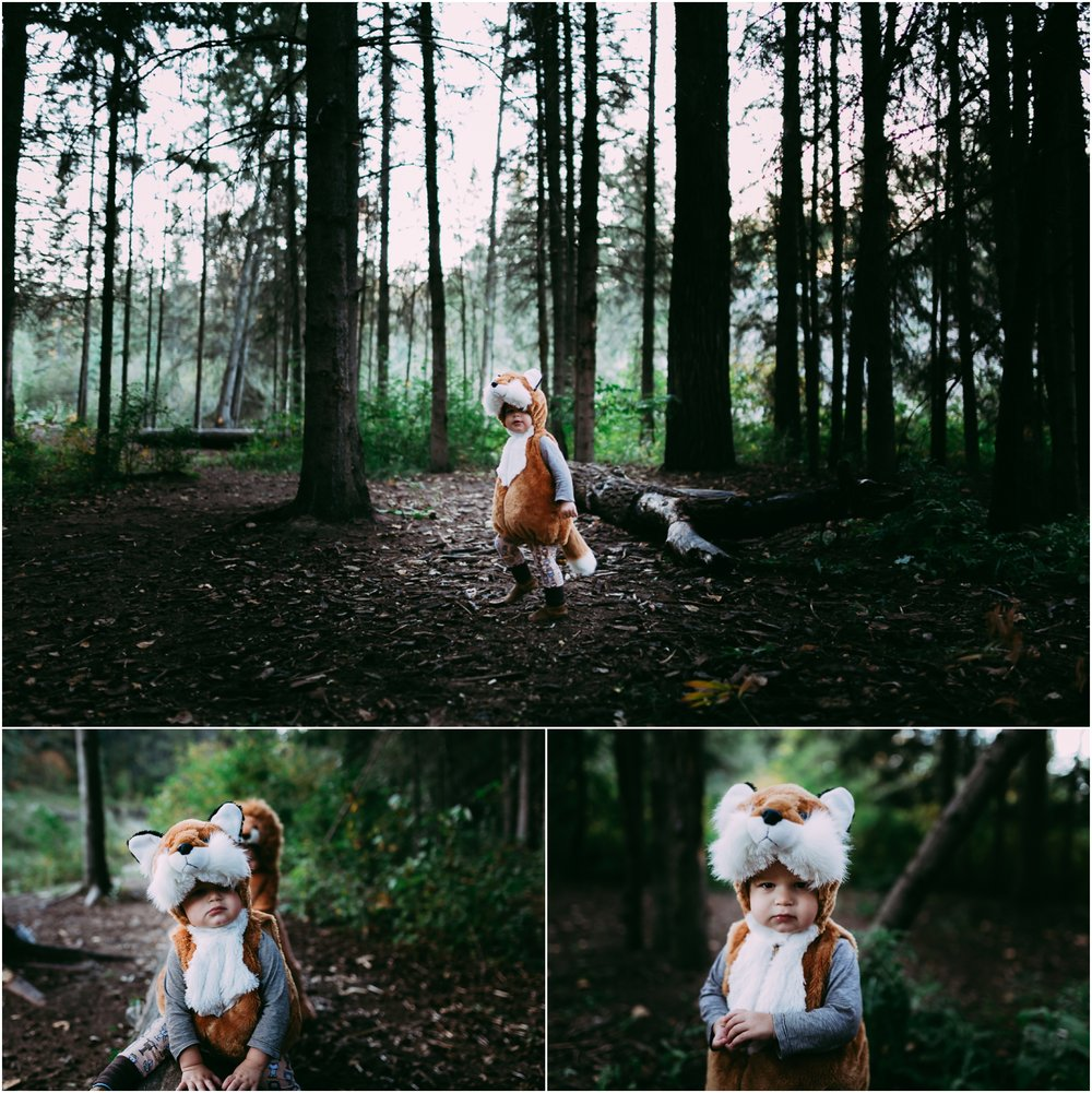 Edmonton Children Photographer - Halloween - Best of 2016 - Costumes - Whitemud Ravine Park - Fox Costume