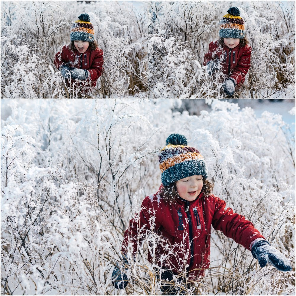 Treelines Photography - Edmonton Lifestyle Photographer - YEG Winter