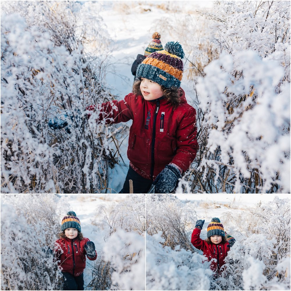 Treelines Photography - Edmonton Lifestyle Photographer - Winter Adventures