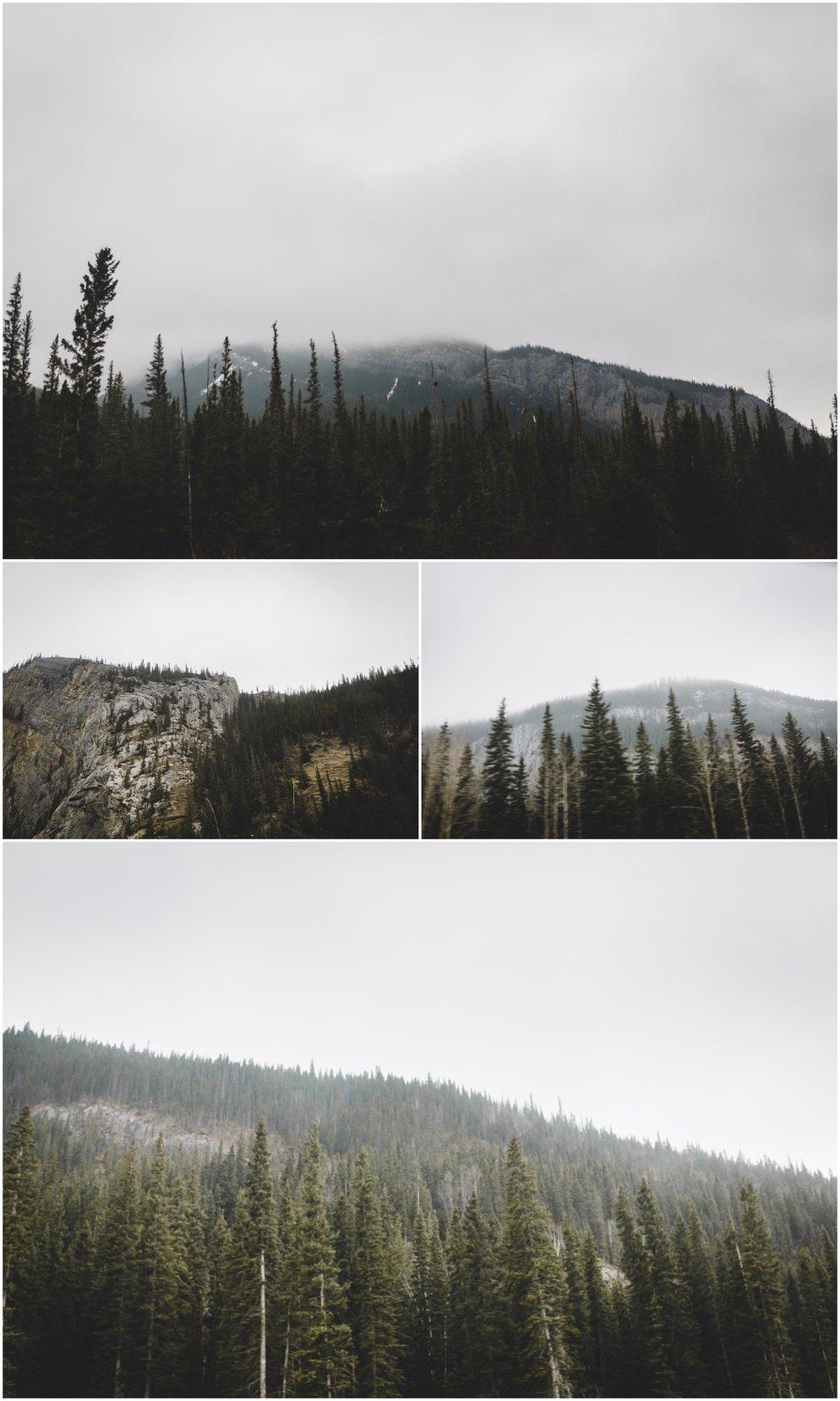 Candian Rocky Mountains - Jasper Alberta - Treelines Photography