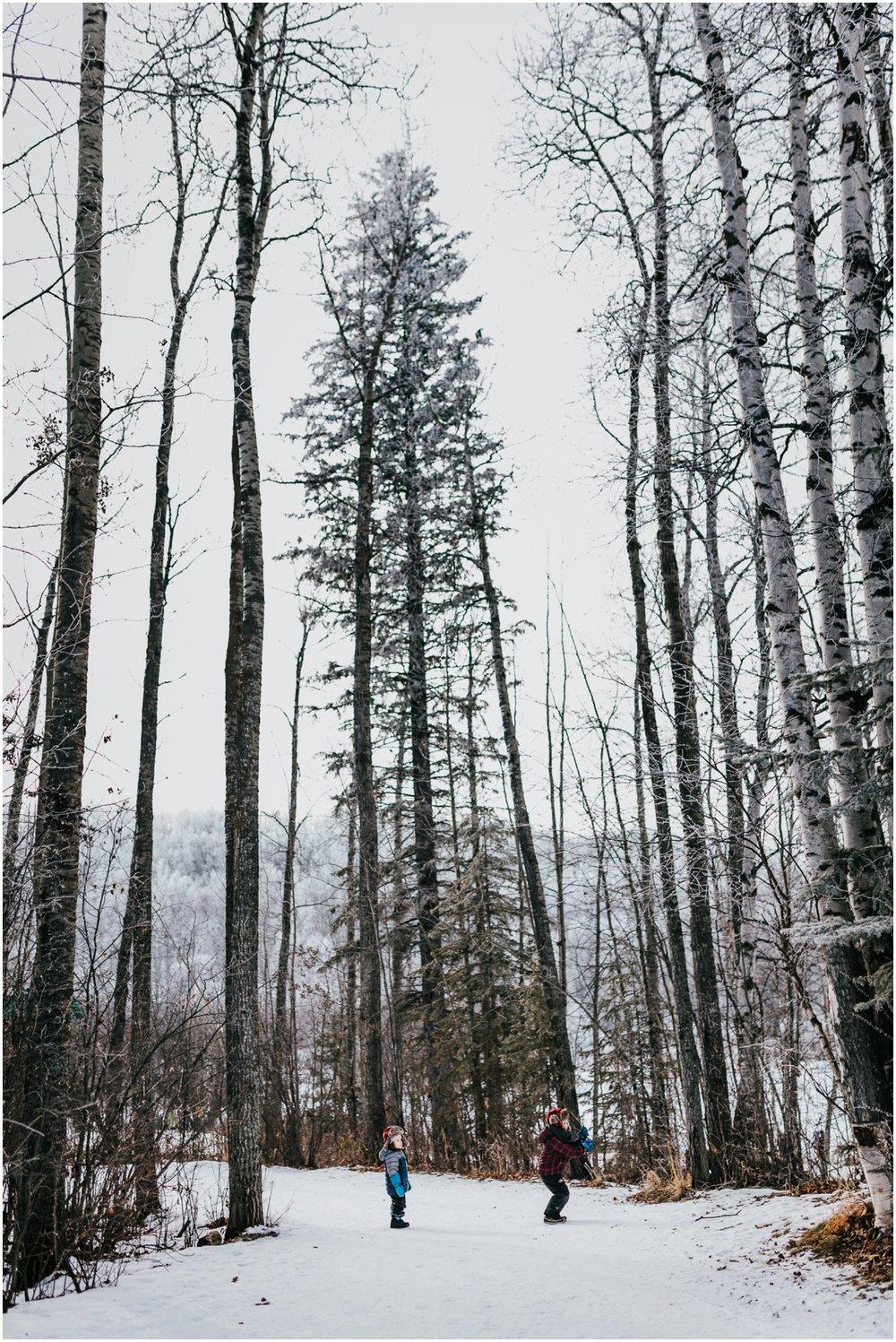 Edmonton photographer - Adventure photography Alberta - Edmonton adventure session - winter trees - Edmonton Alberta Lifestyle photographer - documentary photography