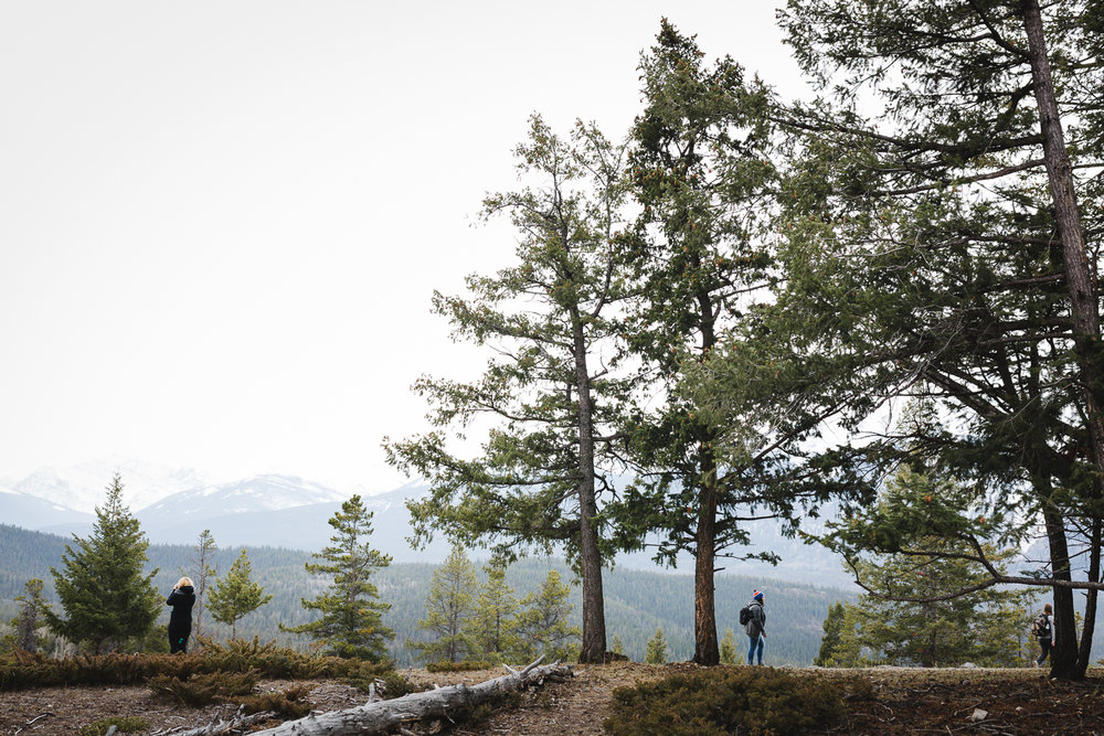Treelines Photography - Edmonton Photographer - Adventure-28.jpg