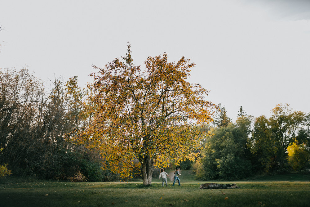 Treelines Photography - Edmonton Photographer - Personal -78.jpg