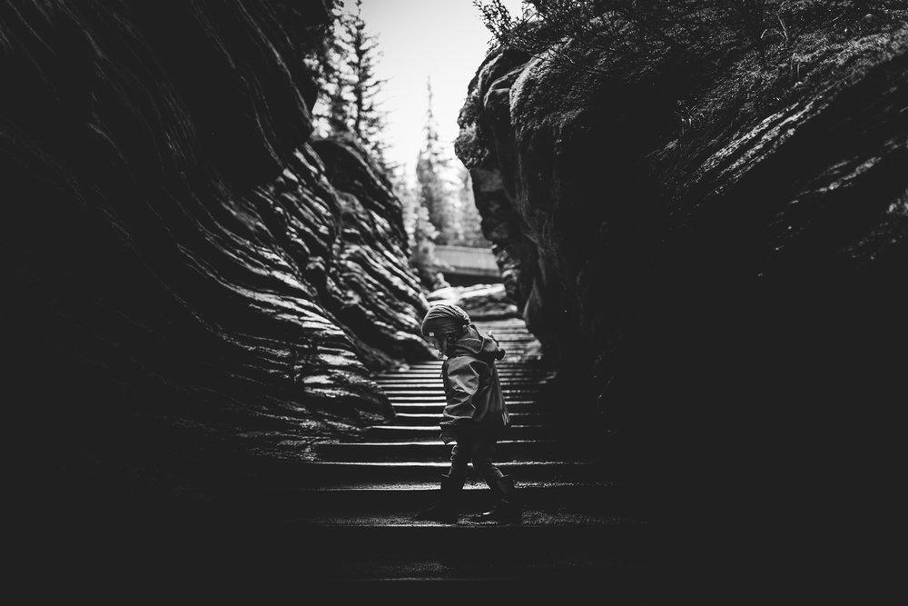 Treelines Photography - Edmonton Photographer - Personal -18.jpg