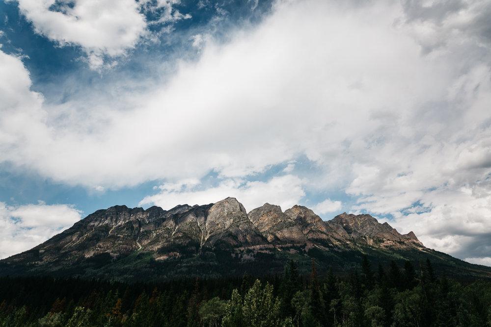 Treelines Photography - Landscape-41.jpg