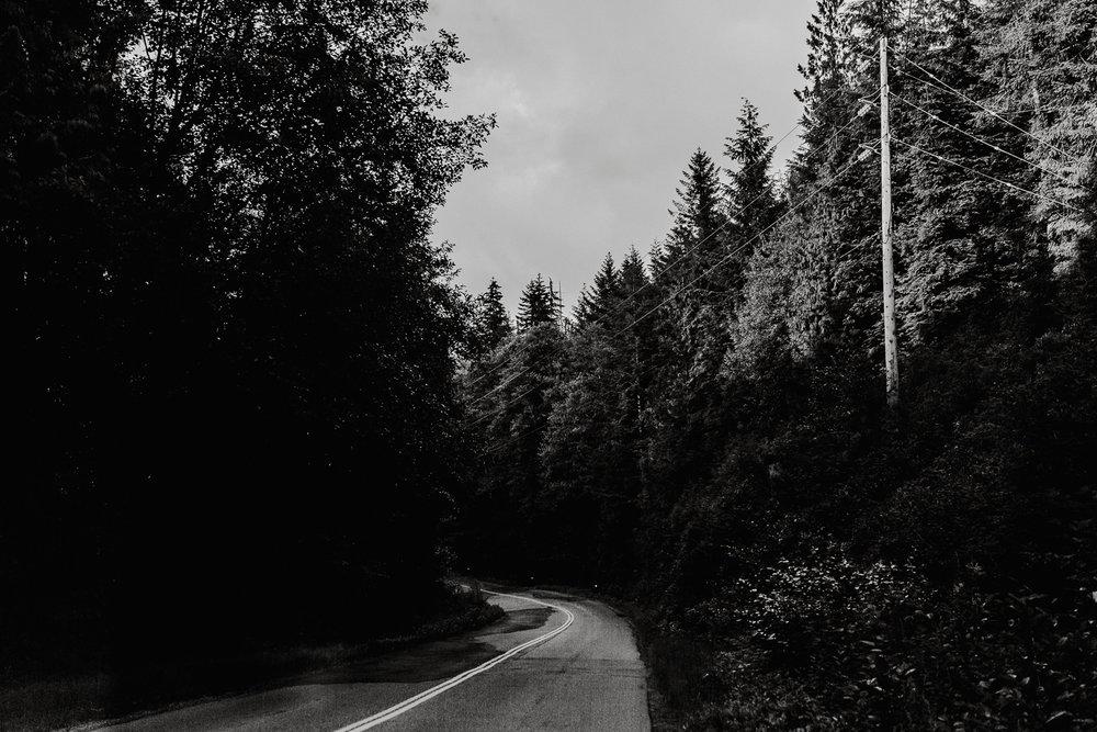 Treelines Photography - Landscape-67.jpg