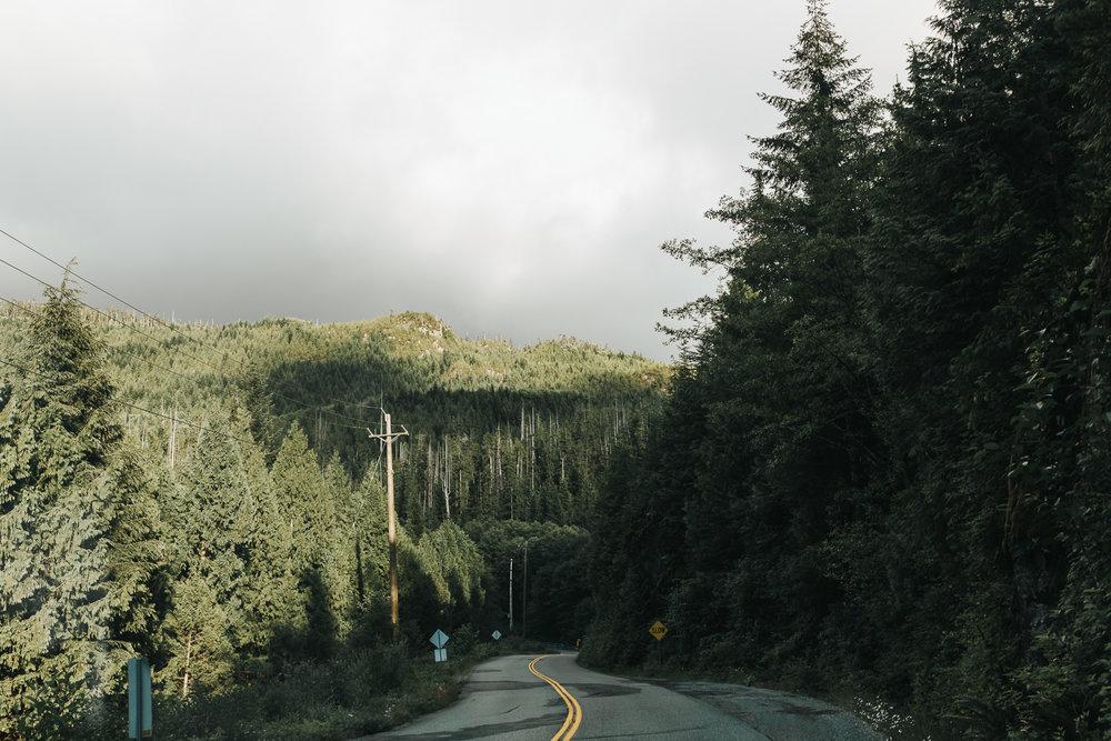 Treelines Photography - Landscape-68.jpg