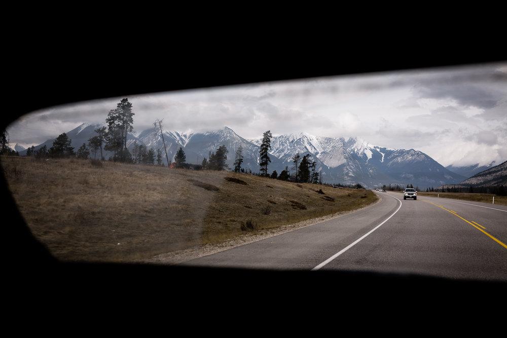 Treelines Photography - Landscape-31.jpg