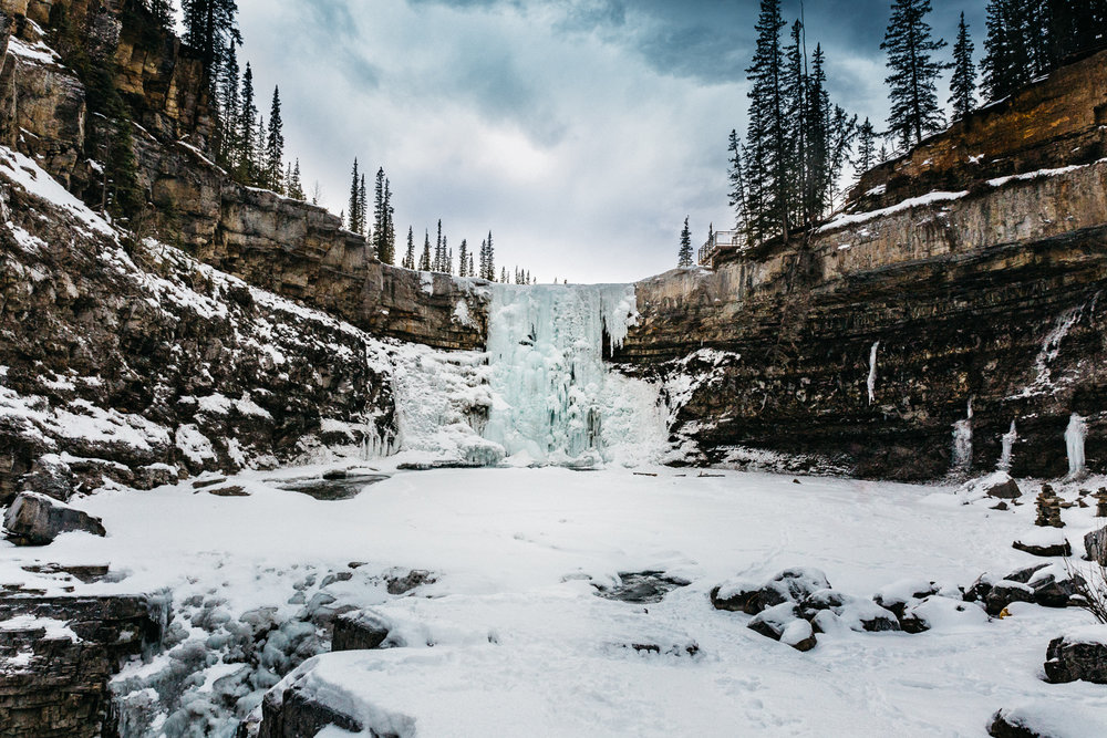 Treelines Photography - Landscape-14.jpg