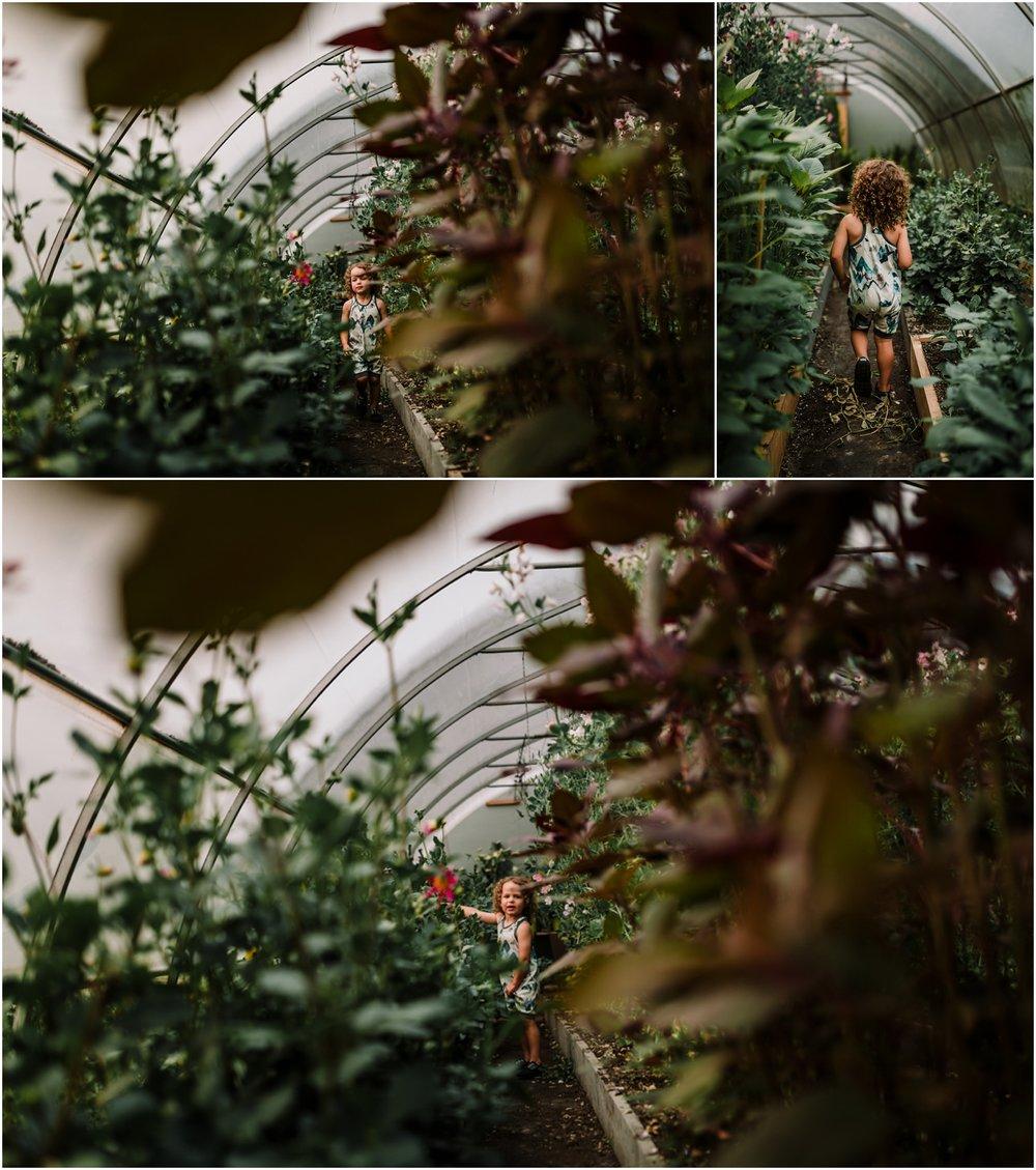 Treelines Photography - Flower Farm - Edmonton Family Photographer