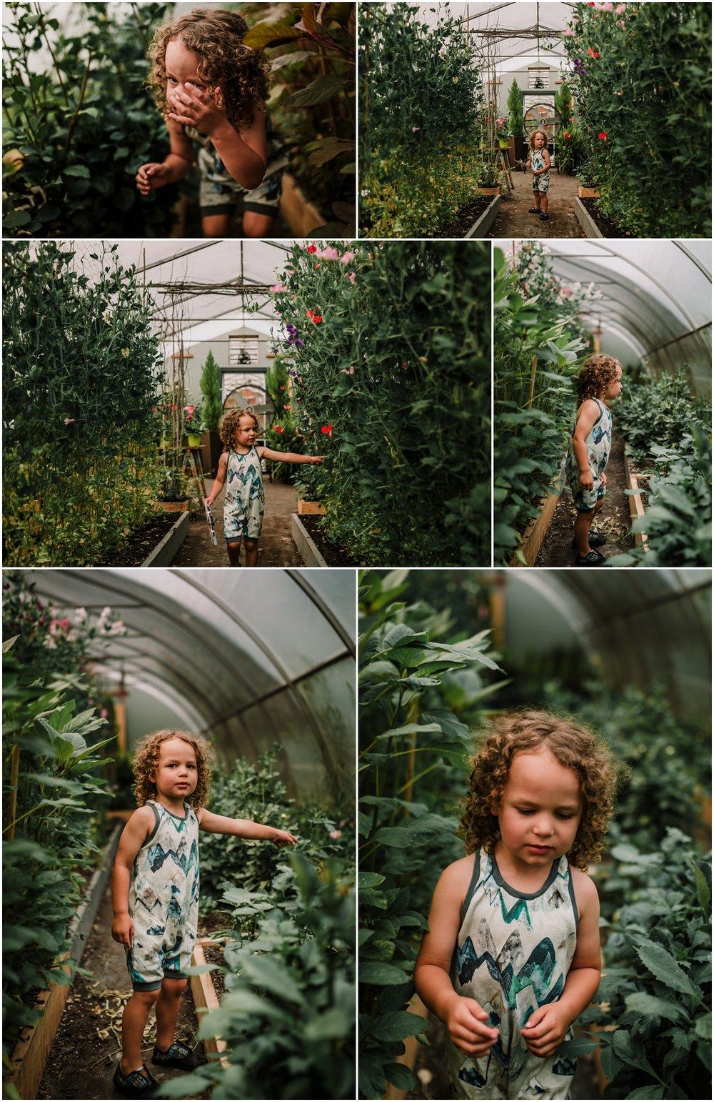 Treelines Photography - Edmonton Family Photographer - Flower Picking Birchwood Meadows