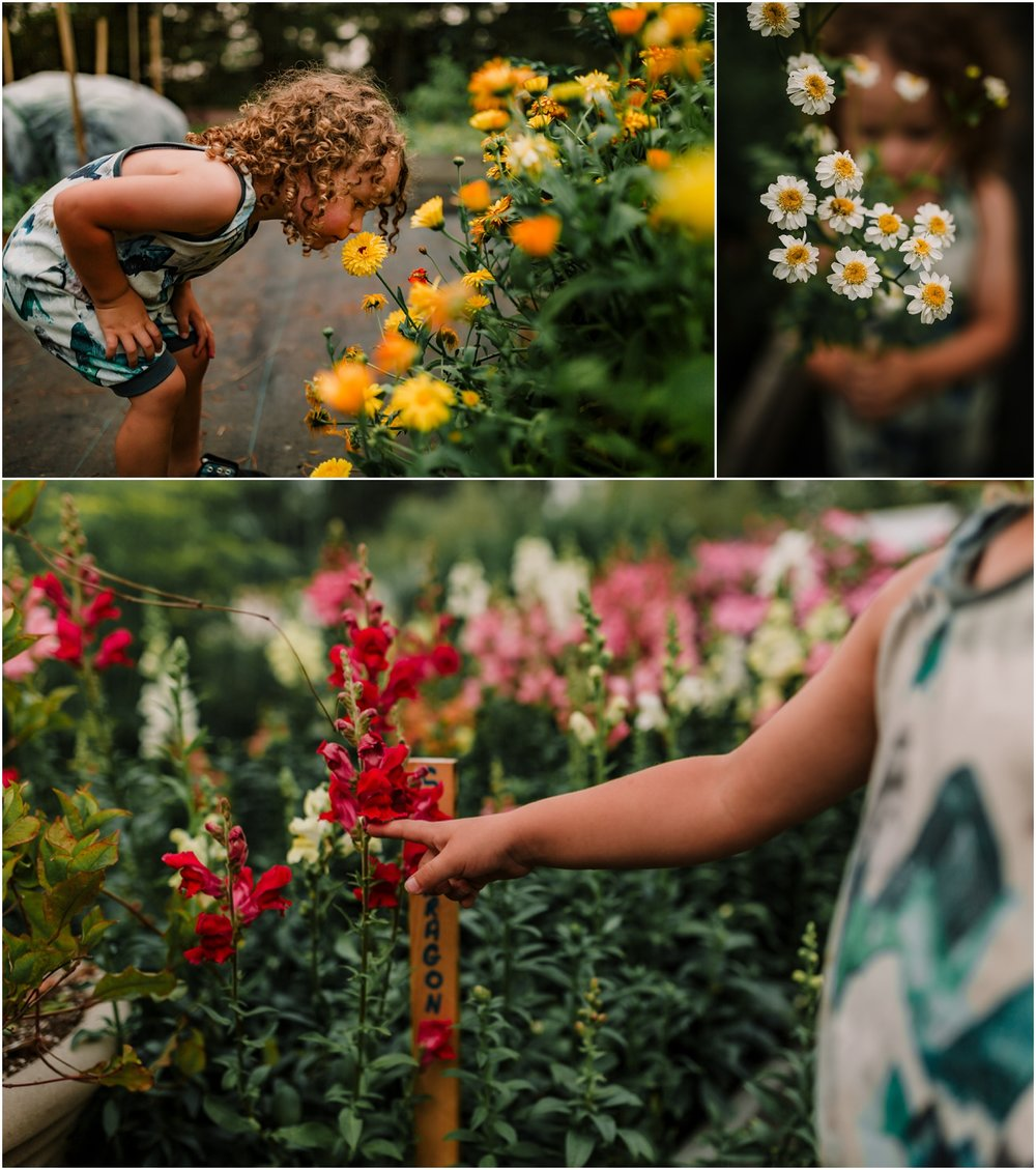 Edmonton Lifestyle Photographer - Treelines Photography - Flower Picking - Family Activities - Birchwood Meadows