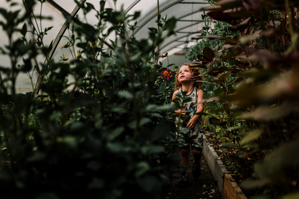 Treelines Photography - Edmonton Family Photographer-5.jpg