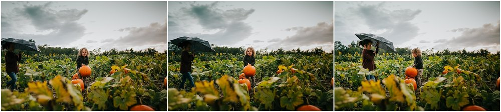 Edmonton Photographer - Somerset farms - U-Pick pumpkin picking - Edmonton Lifestyle Photographer