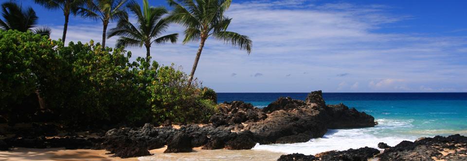 hawaii-01.jpg