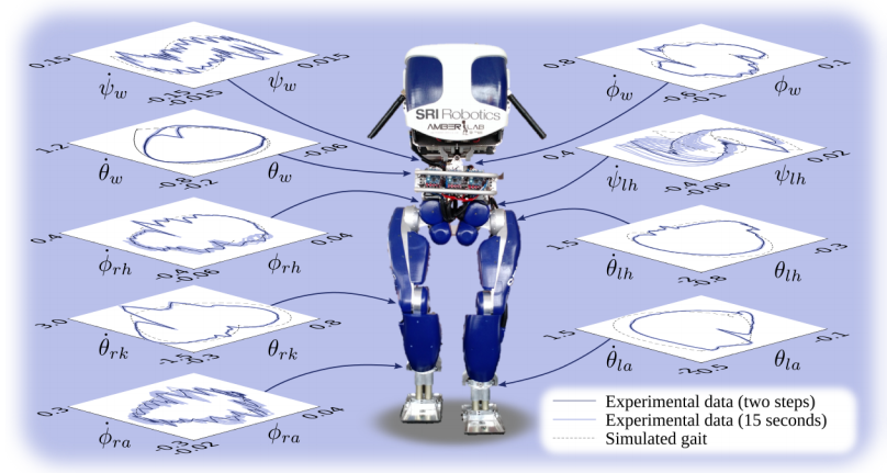 Controlled motions for a walking robot, which were computed using equations that are hundreds of miles long.
