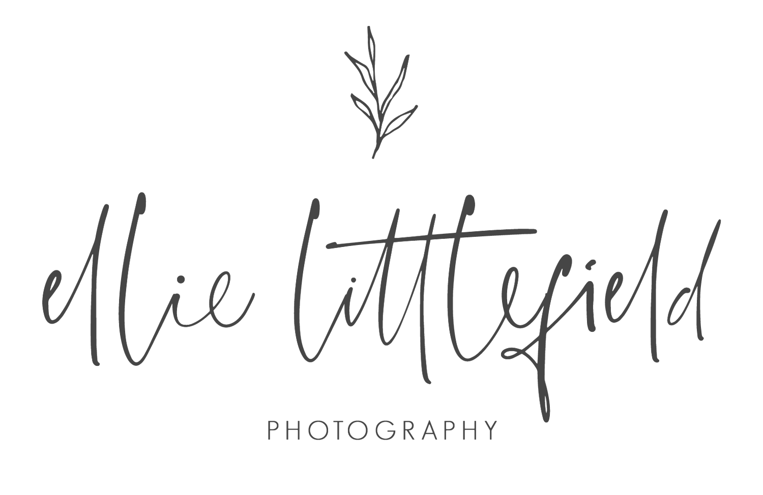 Ellie Littlefield Photography