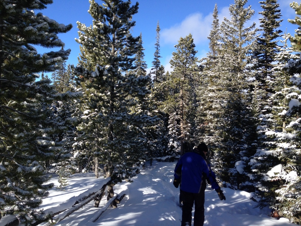The Conophy's snow shoeing near Ulrey's