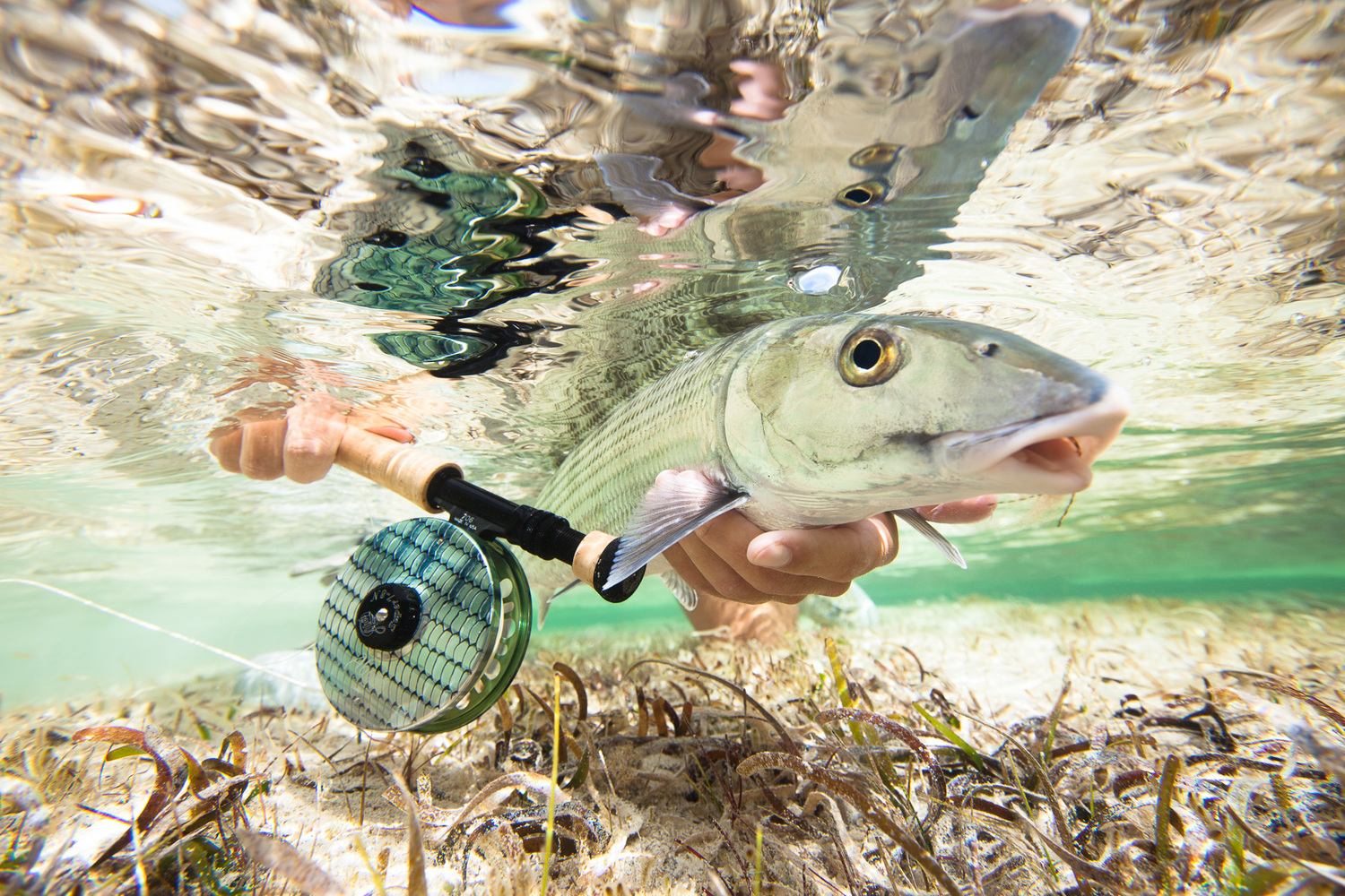 The greatest beards of the fly fishing world amberjack for Bonefish fly fishing