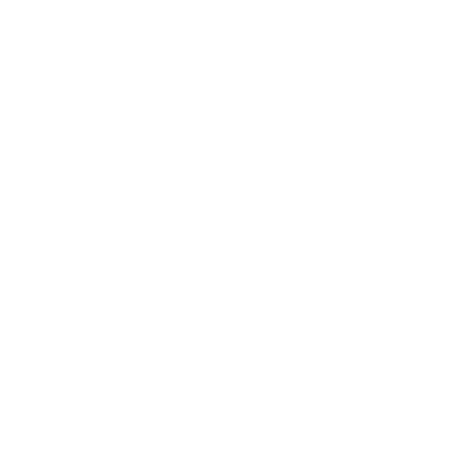 The Creative Brief