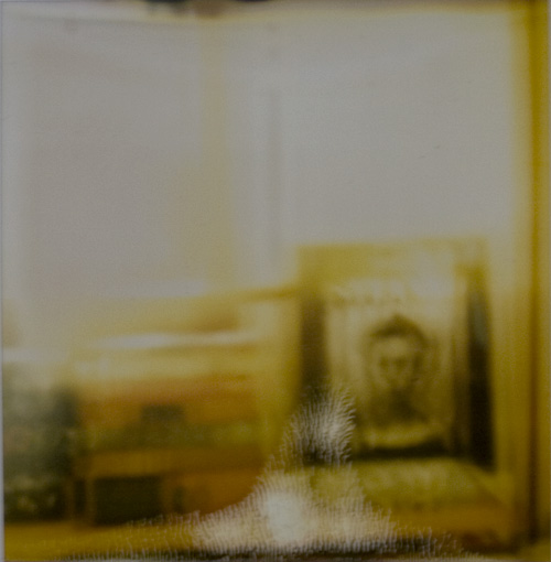 pjb_polaroid2.jpg