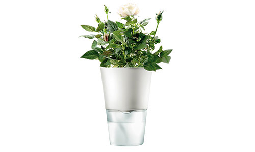eswaterpot_6with_roses.jpg